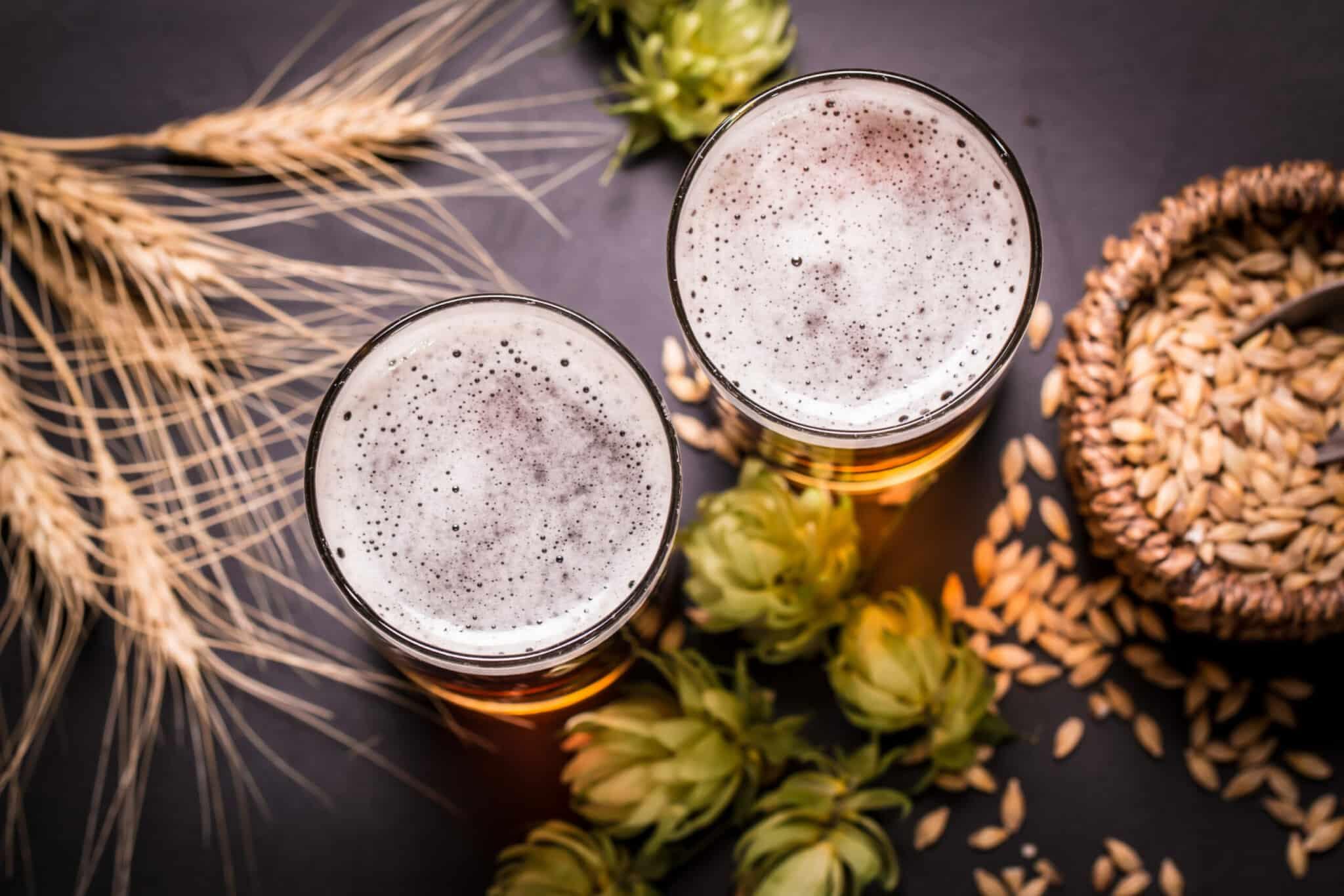 ערכה להכנת בירה